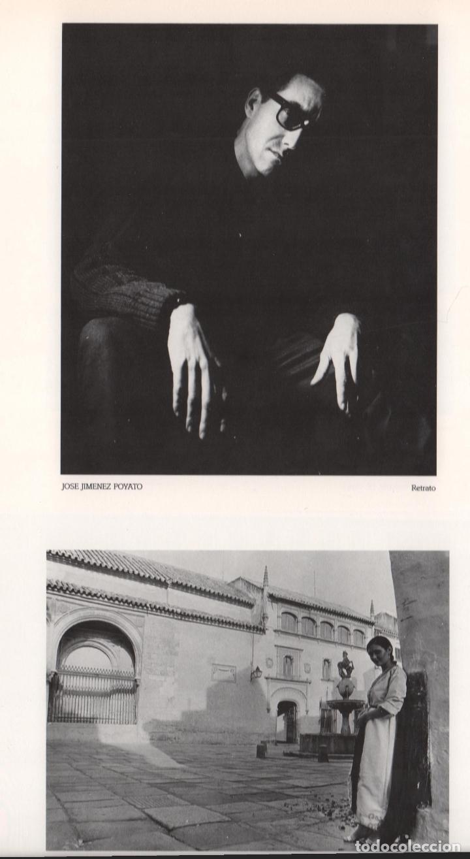 Libros de segunda mano: CRÓNICA DE LA LUZ EXP 41 FOTÓGRAFOS CONTEMPORÁNEOS CÓRDOBA 150 ANIVERSARIO DESCUBRIMIENTO FOTOGRAFÍA - Foto 13 - 176408875