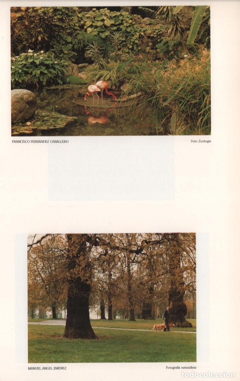 Libros de segunda mano: CRÓNICA DE LA LUZ EXP 41 FOTÓGRAFOS CONTEMPORÁNEOS CÓRDOBA 150 ANIVERSARIO DESCUBRIMIENTO FOTOGRAFÍA - Foto 14 - 176408875