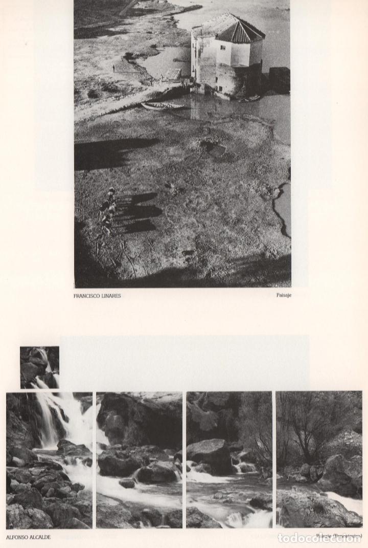 Libros de segunda mano: CRÓNICA DE LA LUZ EXP 41 FOTÓGRAFOS CONTEMPORÁNEOS CÓRDOBA 150 ANIVERSARIO DESCUBRIMIENTO FOTOGRAFÍA - Foto 20 - 176408875