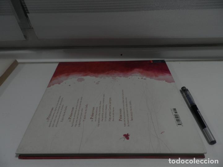 Libros de segunda mano: PRINCESAS OLVIDADAS O DESCONOCIDAS - ED. EDELVIVES, TAPA DURA - Foto 9 - 176480880