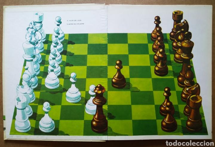 Libros de segunda mano: Ajedrez Para Jóvenes (Toray, 1980). Por William T. McLeod, Ronald Mongredien y Jean-Paul Colbus - Foto 3 - 183391165