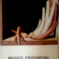 Libros de segunda mano: MUSEO PROVINCIAL DE BELLAS ARTES GRANADA. Lote 176967154
