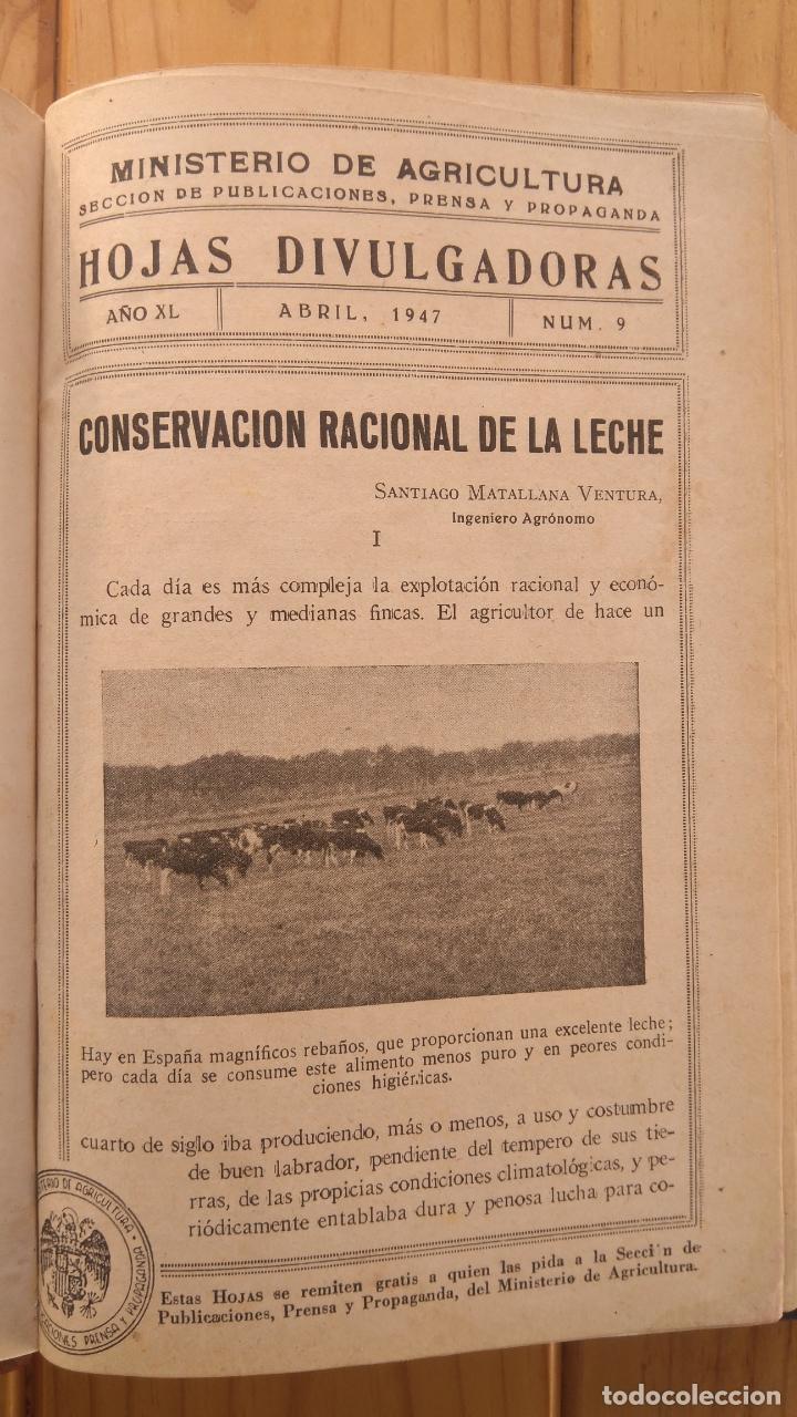 MINISTERIO AGRICULTURA HOJAS DIVULGADORAS (Libros de Segunda Mano - Ciencias, Manuales y Oficios - Otros)