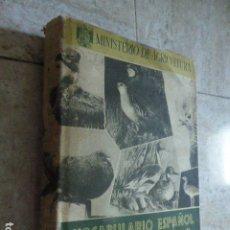 Libros de segunda mano: VOCABULARIO ESPAÑOL DE LA CAZA. MINISTERIO DE AGRICULTURA, 1950. 294 PP. ILUSTRADO.. Lote 178765561
