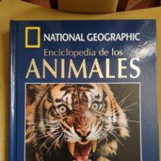 Libros de segunda mano: NATIONAL GEOGRAPHIC LIBRO MÁS DVD VIVIENDO ENTRE LEONES. Lote 178850660