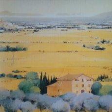 Libros de segunda mano: JOSEP PLA, INÉDIT DE JOSEP VALLS I GRAU (BLUME). Lote 178887841