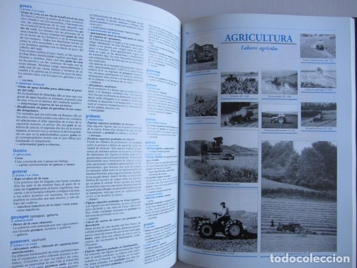 Libros de segunda mano: Diccionario de etnografia vasca. Cultura tradiiconal. Euskaldunak. Etor-Ostoa 1999 2 tomos. Completa - Foto 9 - 178965657