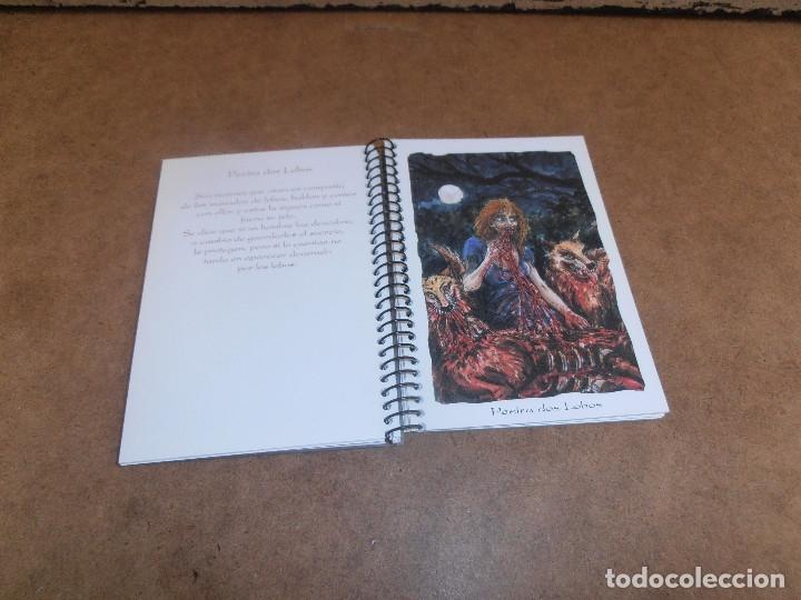 Libros de segunda mano: MITOLOGIA DE GALICIA - CUADERNOS UROGALLO - Foto 3 - 179193561