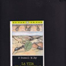 Libros de segunda mano: LA VIDA DE LAS HORMIGAS - DUMAIL & JAY - SM EDITORIAL 1987 / ILUSTRADO. Lote 179528777