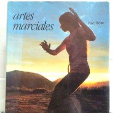 Libros de segunda mano: ARTES MARCIALES. PETER PAYNE. DEBATE 1990.. Lote 180513785
