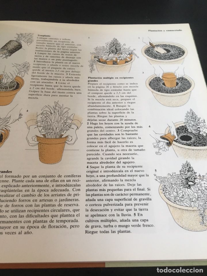 Libros de segunda mano: EL JARDÍN ENTRE MACETAS GUÍA ILUSTRADA PARA EL CUIDADO DE LAS PLANTAS - Foto 3 - 180862612