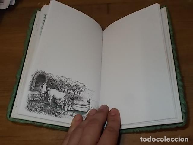 Libros de segunda mano: MI DIARIO DE UNICORNIOS . SUSAETA EDICIONES. CUBIERTA : SEYMOUR SCHACHTER. DIBUJOS : JULIE BERSON - Foto 10 - 181352388