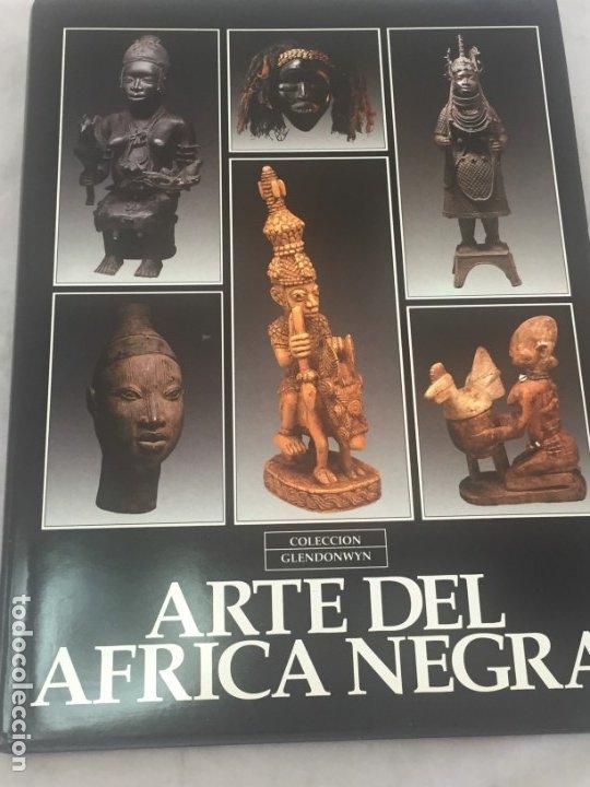 ARTE DEL ÁFRICA NEGRA. COLECCIÓN GLENDONWYN, ACOSTA MALLO LLULL MARTINEZ, TRIBAL 1992 (Libros de Segunda Mano - Bellas artes, ocio y coleccionismo - Otros)