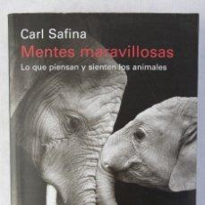 Libros de segunda mano: MENTES MARAVILLOSAS, LO QUE PIENSAN Y SIENTEN LOS ANIMALES-CARL SAFINA-GALAXIA GUTENBERG, 2017. Lote 182902676