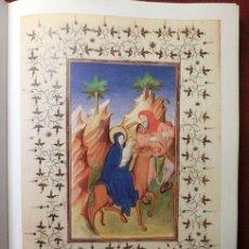 Libros de segunda mano: MANUSCRITOS ILUMINADOS DE OCCIDENTE (S. VIII-XVI). Lote 183770758