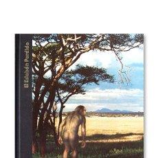 Libros de segunda mano: ORÍGENES DEL HOMBRE - EL ESLABÓN PERDIDO ( TIME-LIFE ). Lote 184008016