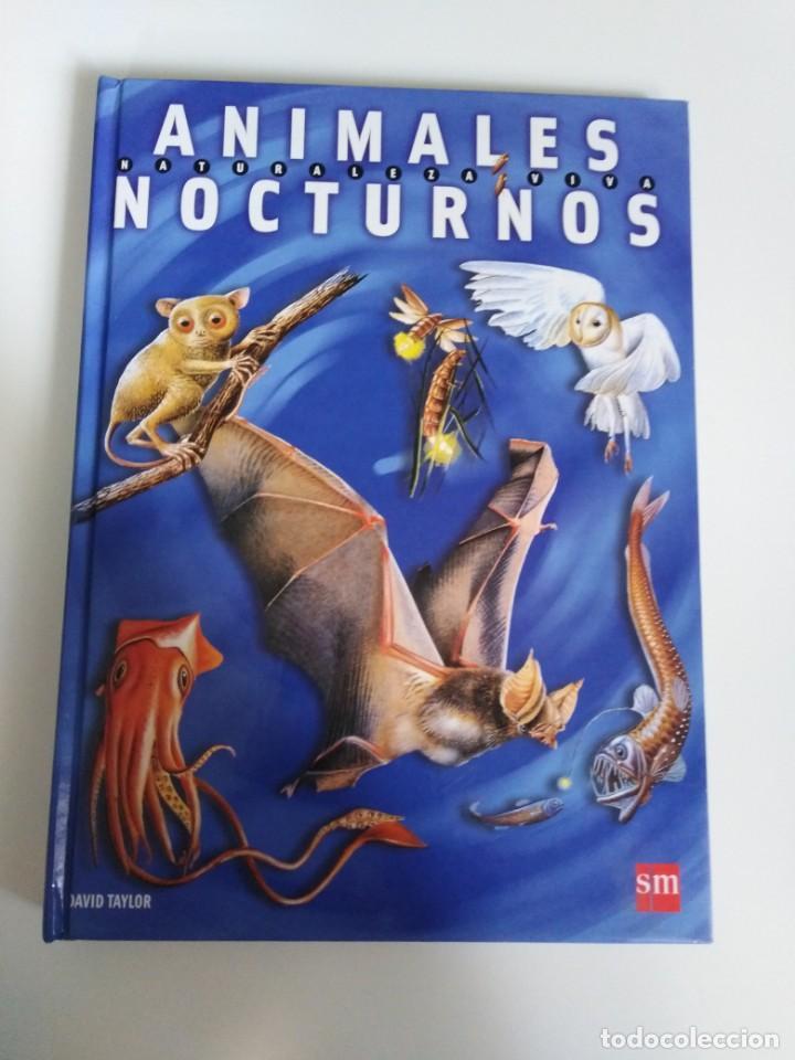 ANIMALES NOCTURNOS. NATURALEZA VIVA. LIBRO POPS-UP. DAVID TAYLOR. ED. SM (Libros de Segunda Mano - Literatura Infantil y Juvenil - Otros)