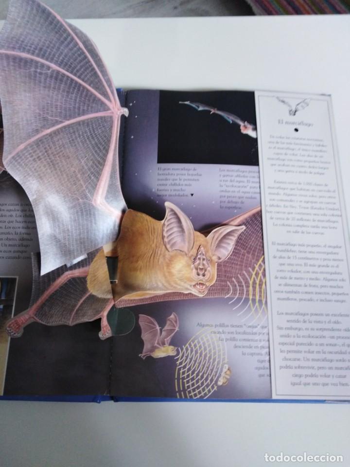 Libros de segunda mano: Animales nocturnos. Naturaleza viva. libro Pops-Up. David Taylor. ed. SM - Foto 5 - 184351813
