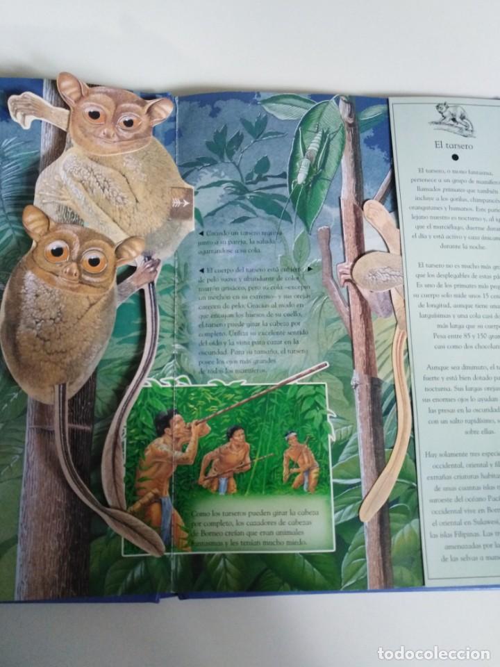 Libros de segunda mano: Animales nocturnos. Naturaleza viva. libro Pops-Up. David Taylor. ed. SM - Foto 6 - 184351813