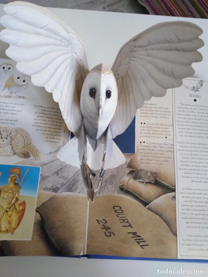Libros de segunda mano: Animales nocturnos. Naturaleza viva. libro Pops-Up. David Taylor. ed. SM - Foto 8 - 184351813