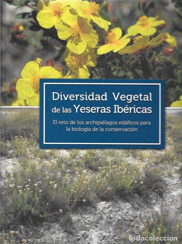 DIVERSIDAD VEGETAL DE LAS YESERAS IBÉRICAS. FLORA. BOTÁNICA. BIOLOGÍA DE LA CONSERVACIÓN. (Libros de Segunda Mano (posteriores a 1936) - Literatura - Otros)