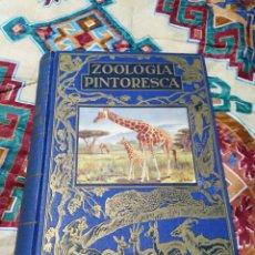 Libros de segunda mano: ZOOLOGÍA PINTORESCA EDITORIAL RAMÓN SOPENA. Lote 185475321