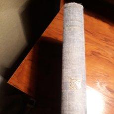 Libros de segunda mano: NOSOTROS LOS RIVERO - DOLORES MEDIO. Lote 189216935