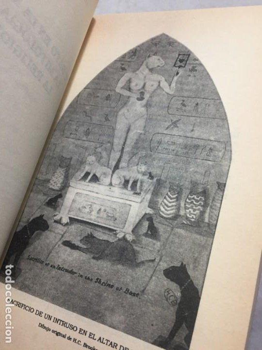 Libros de segunda mano: EL GATO EN LA MITOLOGÍA, LA RELIGIÓN Y LA MAGIA de M. Oldfield Howey 1991 - Foto 4 - 190903748