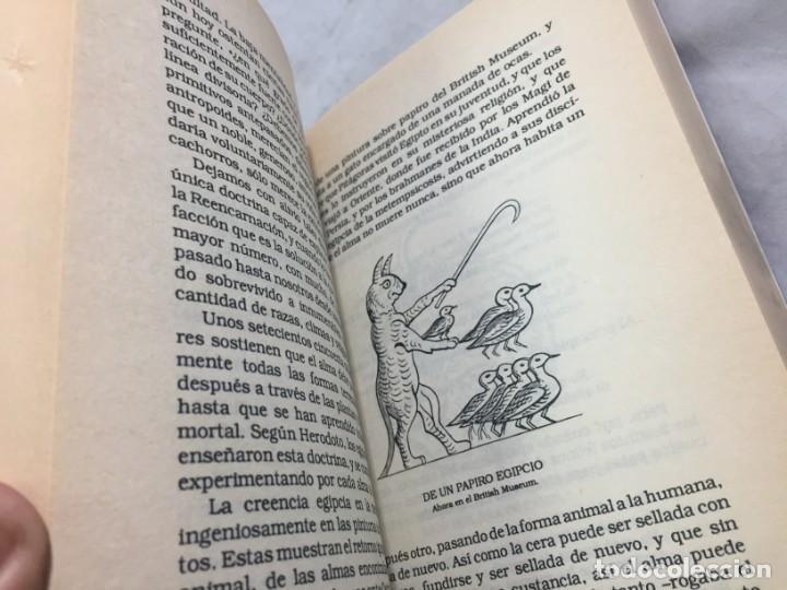 Libros de segunda mano: EL GATO EN LA MITOLOGÍA, LA RELIGIÓN Y LA MAGIA de M. Oldfield Howey 1991 - Foto 7 - 190903748