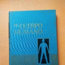 Libros de segunda mano: EL CUERPO HUMANO BRUGUERA. Lote 191344100
