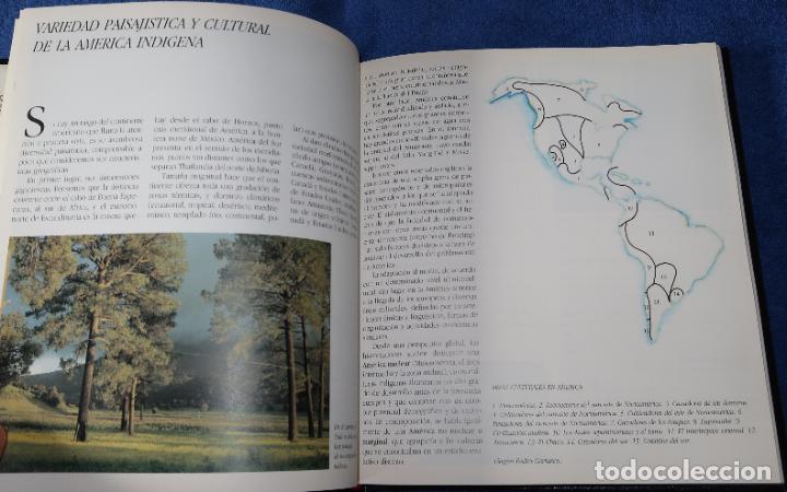 Libros de segunda mano: Agenda - Quinto Centenario - 1990 / 1991 - Culturas Pre-Colombinas - Foto 19 - 191750482