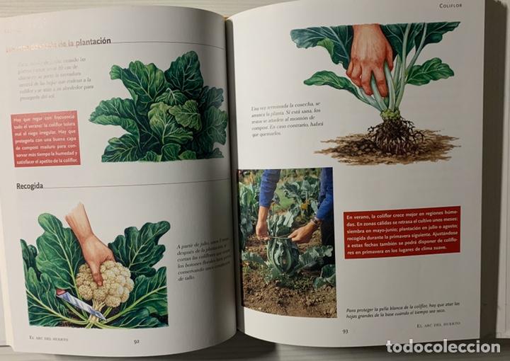 Libros de segunda mano: EL ABC DEL HUERTO PASO A PASO. Editorial Susaeta - Foto 3 - 191924837