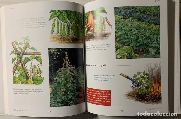 Libros de segunda mano: EL ABC DEL HUERTO PASO A PASO. Editorial Susaeta - Foto 4 - 191924837