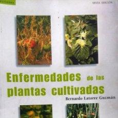 Livres d'occasion: ENFERMEDADES DE PLANTAS CULTIVADAS. PRESENTACIÓN GUILLERMO DONOSO HARRIS. - LATORRE GUZMÁN, BERNARDO. Lote 193461522