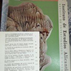 Libros de segunda mano: REVISTA DE ESTUDIOS ALICANTINOS N.º 34 1981 AZORIN ALFOMBRAS CREVILLENTE COVA ELS CENDRES. Lote 194352148