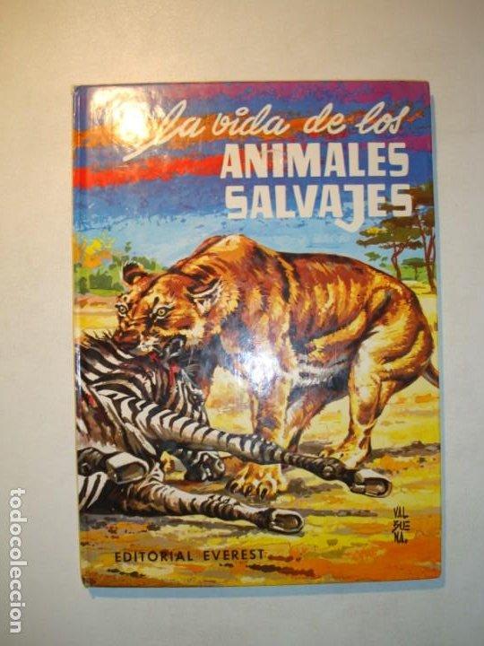 LA VIDA DE LOS ANIMALES SALVAJES - EFREN QUINTANILLA SAINZ / DIBUJANTE: VALBUENA - ED. EVEREST 1982 (Libros de Segunda Mano - Literatura Infantil y Juvenil - Otros)