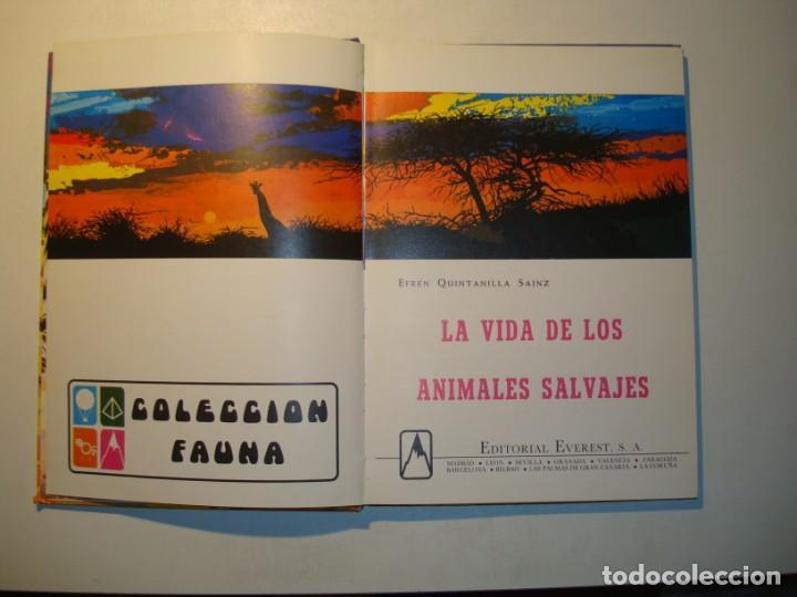 Libros de segunda mano: LA VIDA DE LOS ANIMALES SALVAJES - EFREN QUINTANILLA SAINZ / DIBUJANTE: VALBUENA - ED. EVEREST 1982 - Foto 4 - 194509751