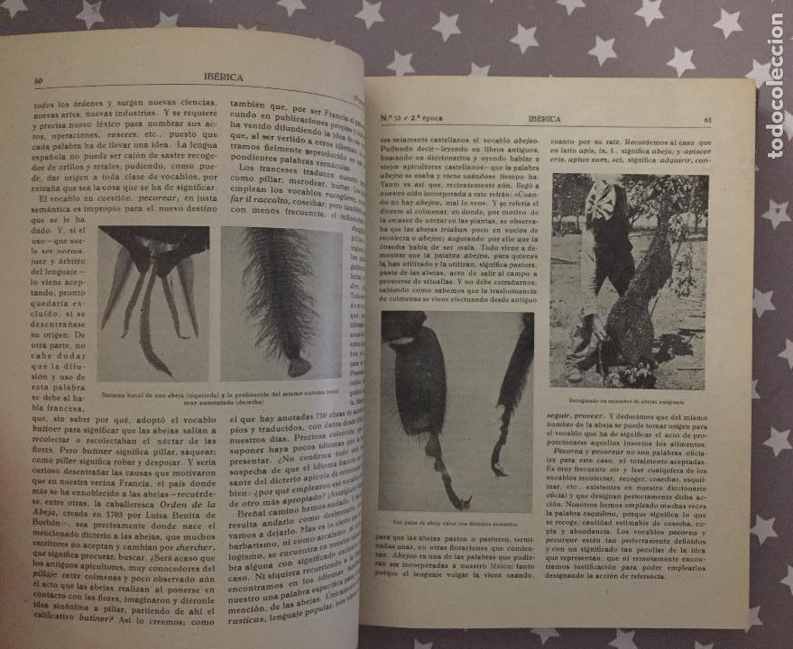 Libros de segunda mano: REVISTA IBERICA, Año 2, Tomo 3, 1946 Primer Semestre - Foto 3 - 194736725