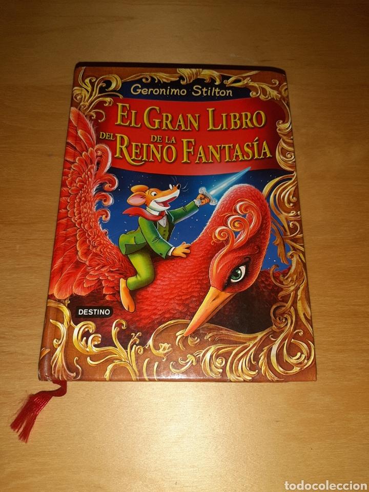 EL GRAN LIBRO DEL REINO DE LA FANTASÍA. GERONIMO STILTON (Libros de Segunda Mano - Literatura Infantil y Juvenil - Otros)