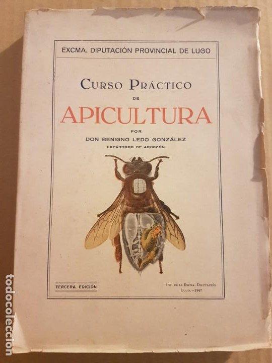 CURSO PRÁCTICO DE APICULTURA ( BENIGNO LEDO GONZÁLEZ 1947 ) (Libros de Segunda Mano - Ciencias, Manuales y Oficios - Otros)