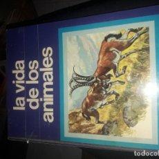 Libros de segunda mano: LA VIDA DE LOS ANIMALES. Lote 195109245