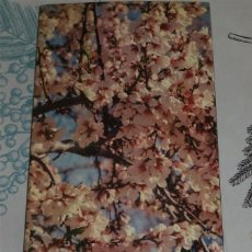 Libros de segunda mano: GUIA ILUSTRADA DE ALICANTE Y PROVINCIA CON MAPAS Y RUTAS E. LLOBREGAT DIPUTACIÓN 1982 PASTA SEMIRIGI. Lote 195149591