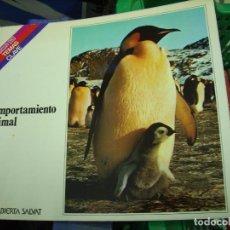 Libros de segunda mano: EL COMPORTAMIENTO ANIMAL, EDUARDO CRUELLS MONLLOR. L.11029-660. Lote 195189016