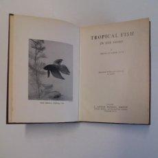 Libros de segunda mano: RARO LIBRO TROPICAL FISH PIONERO SOBRE PECES TROPICALES AÑOS 60´S. Lote 195318562