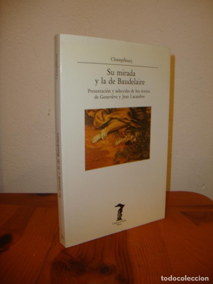 SU MIRADA Y LA DE BAUDELAIRE - CHAMPFLEURY - LA BALSA DE LA MEDUSA, VISOR, MUY BUEN ESTADO (Libros de Segunda Mano - Bellas artes, ocio y coleccionismo - Otros)