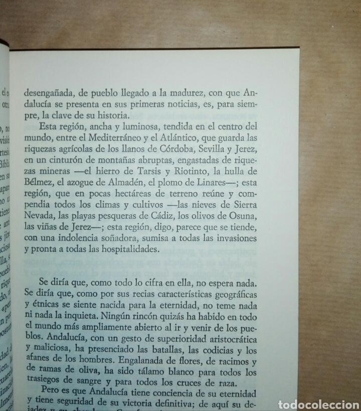 Libros de segunda mano: ENSAYOS ANDALUCES...1972 - Foto 4 - 195337966