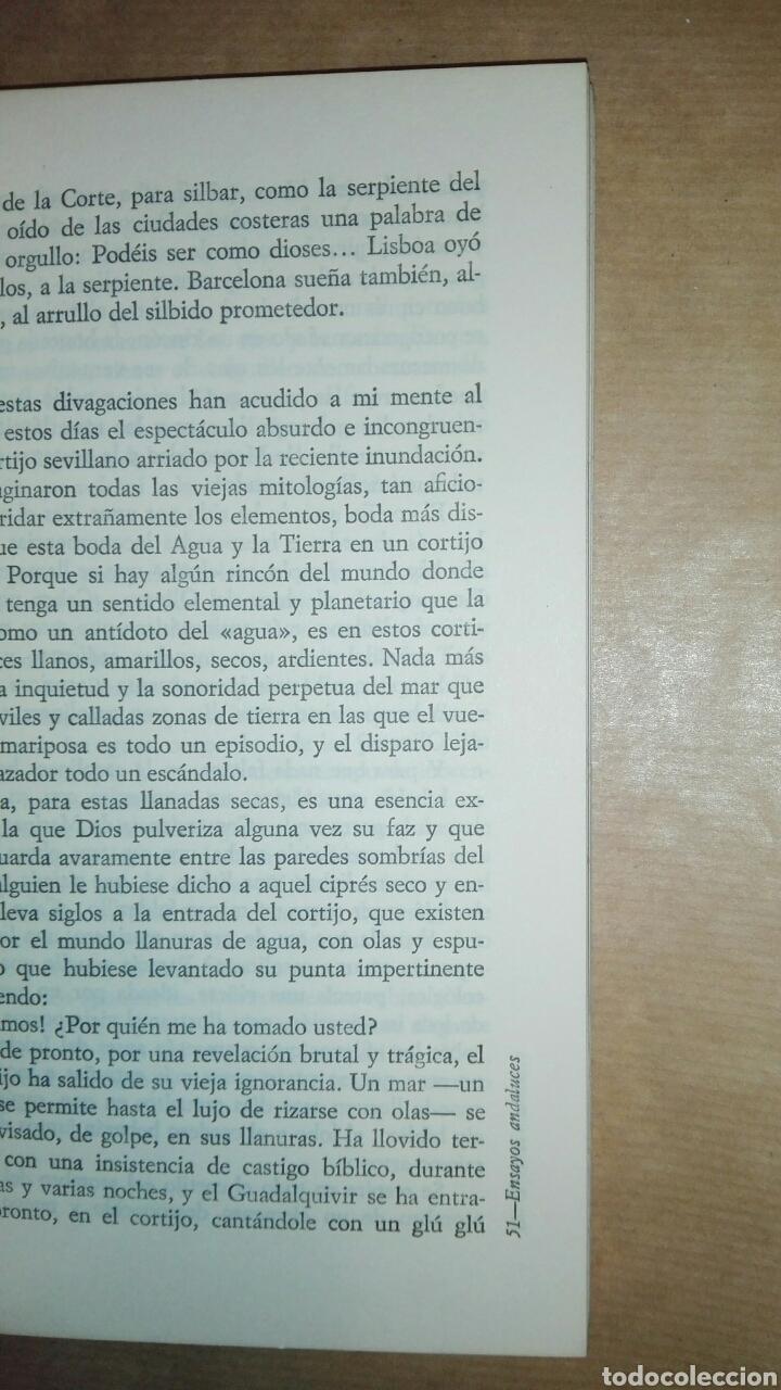 Libros de segunda mano: ENSAYOS ANDALUCES...1972 - Foto 5 - 195337966