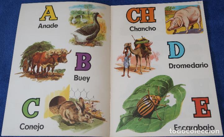 Libros de segunda mano: ABC de Animales Domésticos - Ediciones BOGA (1970) ¡Impecable! - Foto 2 - 195340400