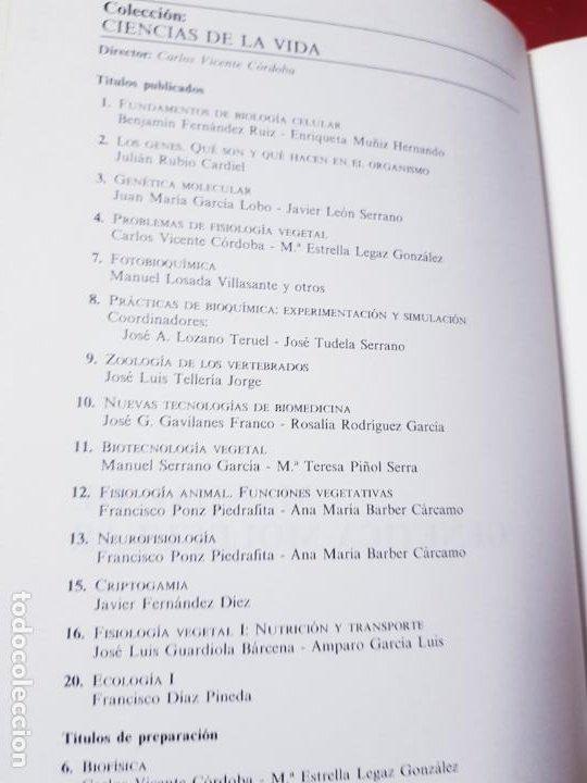 Libros de segunda mano: libro-manual de genética molecular 3-ciencias de la vida-1990-editora síntesis-Javier león serrano++ - Foto 7 - 195417190