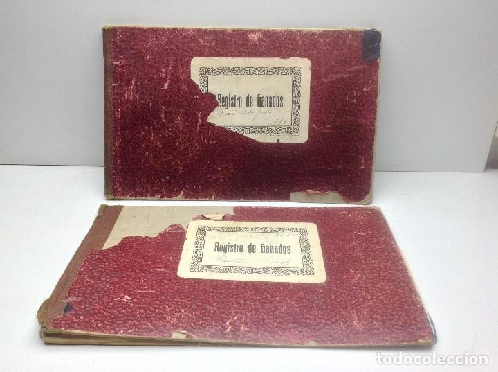 LIBRO DE REGISTRO DE GANADO - AYUNTAMIENTO DE SON DEL PINO - SON -VALENCIA DE ANEU - LERIDA (Libros de Segunda Mano - Ciencias, Manuales y Oficios - Otros)